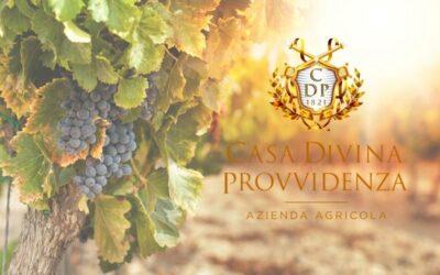 """Cesanese """"Casa Divina Provvidenza"""" tra i vini migliori d'Italia"""